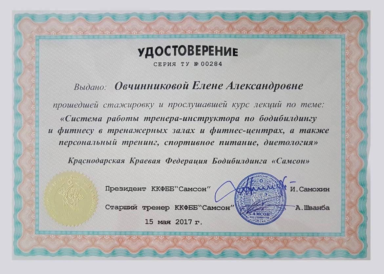 ovchinnikova_sertifikat.jpg